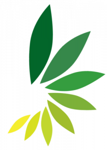 kmk_logo_png-leaves